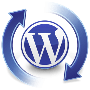 Actualizar wordpress – plugins y themes